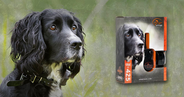 SportDOG Field Trainer SD-425 Training Collar Review: For Stubborn Dogs